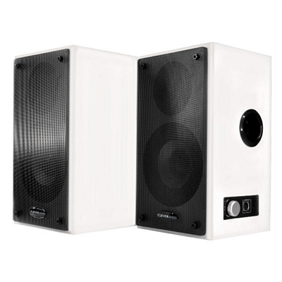Traulux Altavoces Pared para Pizarra Digital 2x15W